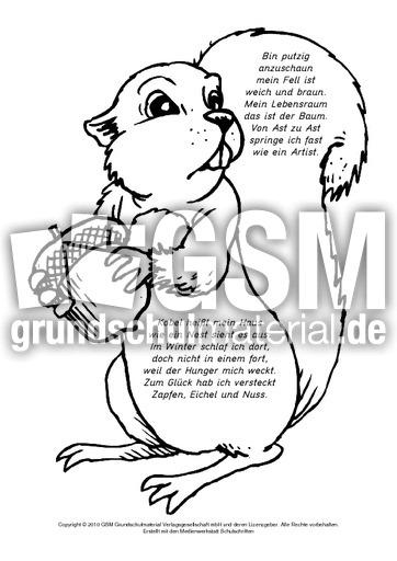 Arbeitsblatt Eichhörnchen Klasse 2 : Ausschneidegedicht eichhörnchen ausschneidegedichte