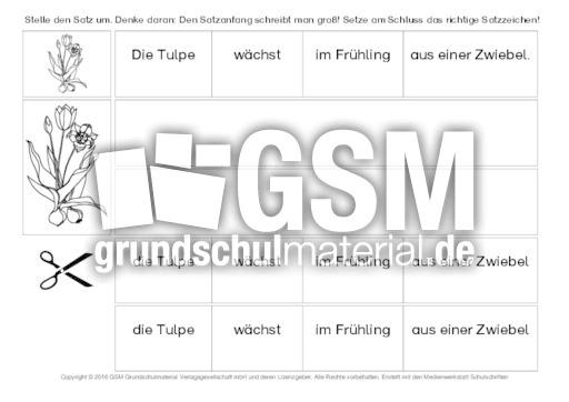 tulpe s tze umstellen 1 s tze umstellen grammatik deutsch klasse 2. Black Bedroom Furniture Sets. Home Design Ideas