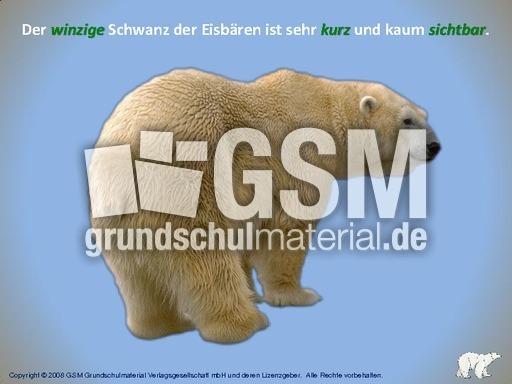 Eisbu00e4r interaktiv Adjektive suchen - Wortarten - Computeru00fcbungen - Deutsch Klasse 3 ...
