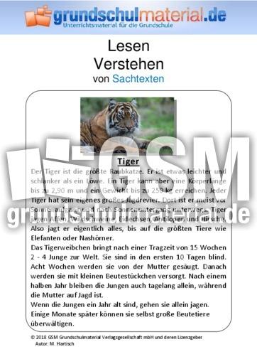 tiger sachtext sachtexte tiere sachtexte lesen