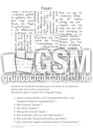Fasan - 155 Tierbeschreibungen Puzzle - Tierbeschreibungen - Lesen ...