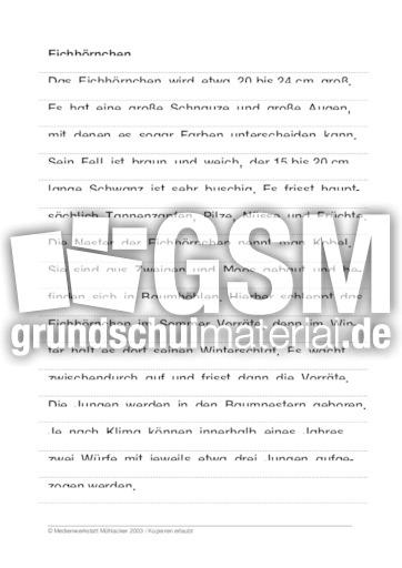 eichh rnchen 39 tierbeschrebungen tierbeschreibungen lesen deutsch klasse 3. Black Bedroom Furniture Sets. Home Design Ideas