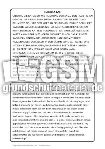 Hauskatze - 39 Tierbeschrebungen - Tierbeschreibungen ...