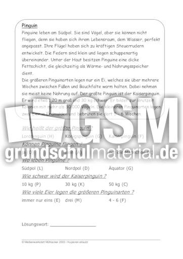 Pinguin - 39 Tierbeschreibungen - Fragen - Tierbeschreibungen ...