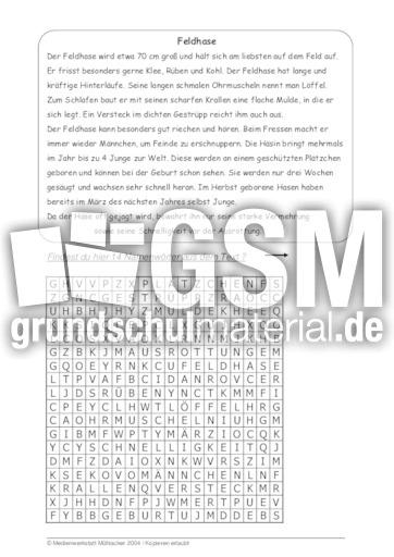 feldhase 39 tierbeschreibungen tierbeschreibungen lesen deutsch klasse 3. Black Bedroom Furniture Sets. Home Design Ideas