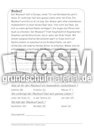 Fein Maulwurf Konvertierungsprobleme Arbeitsblatt Fotos ...