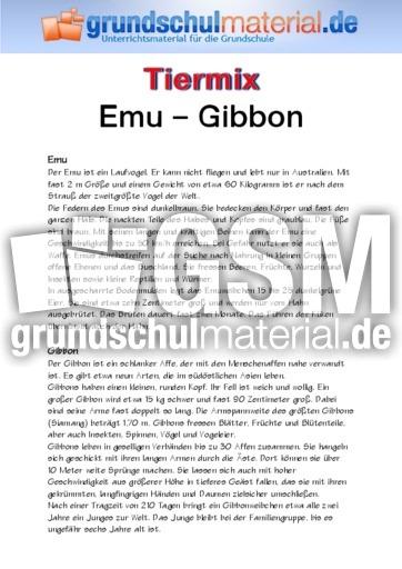 Emu - Gibbon - Tiermix - Tierbeschreibungen - Lesen - Deutsch Klasse ...
