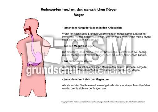 Kartei-Redenskarten-Magen - Kartei-Körper-Redensarten - Redensarten ...