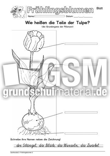 Jahreszeiten Arbeitsblatt Klasse 1 : Arbeitsblatt s arbeitsblätter frühling