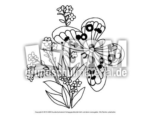 Ausmalbild Vergissmeinnicht Ausmalbilder Blumen Frühling