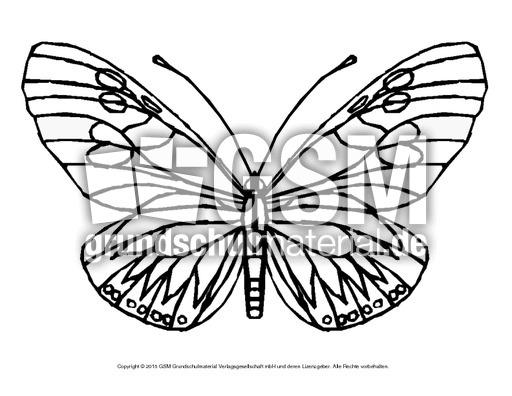 Ausmalbild Schmetterling 5 Ausmalbilder Schmetterling Frühling