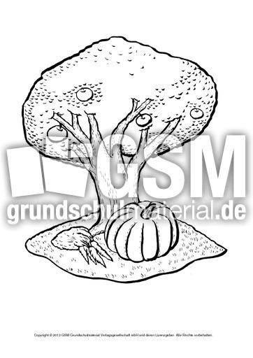 Ausmalbilder Apfel Apfelbaum A 1 10 Ausmalbilder Herbst Jahreszeiten Hus Klasse 1 Grundschulmaterial De