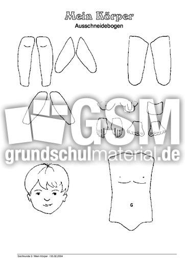 Arbeitsblatt as - Arbeitsblätter - Menschlicher-Körper - HuS Klasse ...