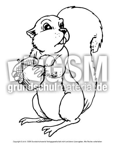 Ausmalbild Eichhörnchen A 1 Ausmalbilder Eichhörnchen