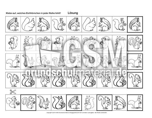 Briefe Richtig Ordnen : Eichhörnchen bilder richtig ordnen