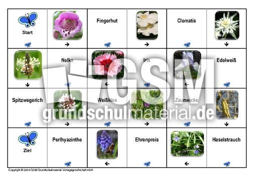 dominofrühlingsblüten6  dominofrühlingsblumen