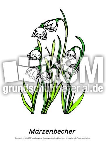 frühlingsblühertafelkartenmärzenbecher  frühlingsblüher