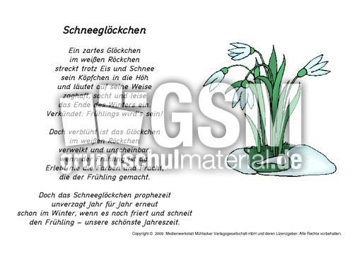 Schneeglöckchen-Gedicht-Grafik - Frühlingsgedichte - Frühling ...