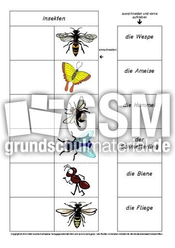 flip flap zuordnung insekten 1 4 lapbook tiere allgemein lapbooks tiere hus klasse 2. Black Bedroom Furniture Sets. Home Design Ideas