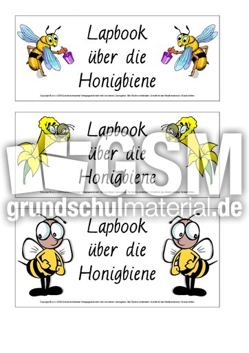 lapbook titelseite 1 2 lapbookmaterialien honigbiene honigbiene werkstatt hus klasse 3. Black Bedroom Furniture Sets. Home Design Ideas