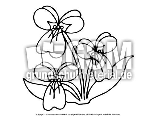 Ausmalbild Veilchen 1 Ausmalbilder Blumen Fruhling