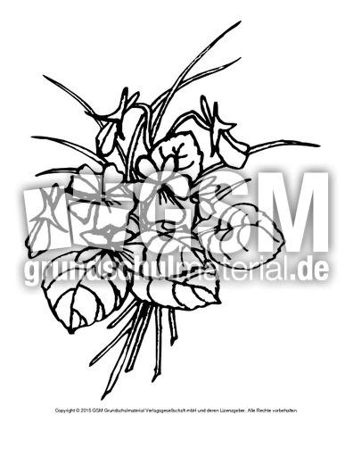 Ausmalbild Veilchen 4 Ausmalbilder Blumen Fruhling