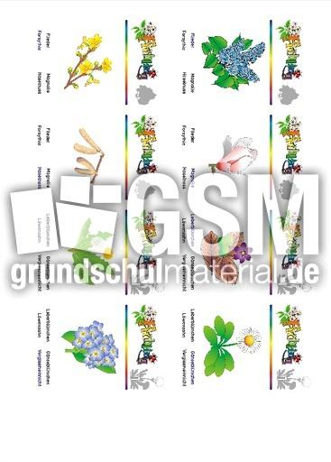 spring karte 03  quartett  frühling  jahreszeiten  hus
