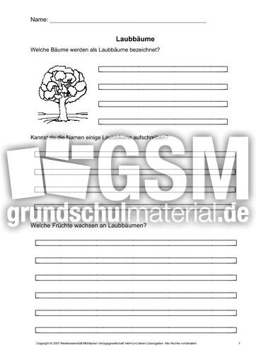Arbeitsblatt Gefühle Klasse 1 : Arbeitsblatt laubbäume arbeitsblätter bäume themen