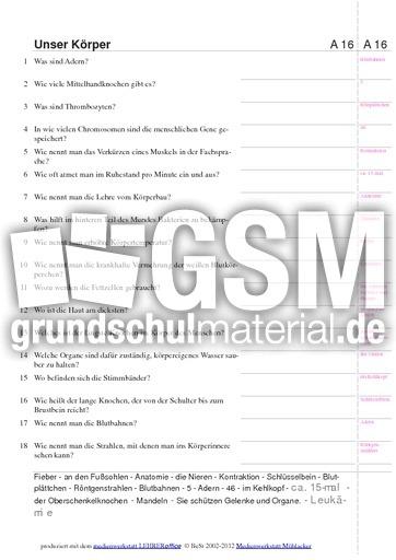 Exelent Kontraktionen Grammatik Arbeitsblatt Pattern - Kindergarten ...