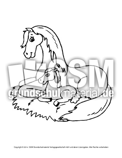ausmalbilderpferdea110  ausmalbilder pferde  tiere