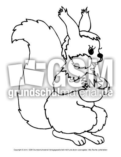 ausmalbildeichhörnchena 2  eichhörnchen  tiere zum