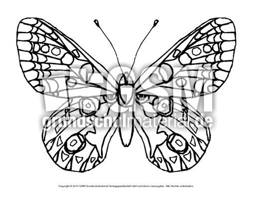 Ausmalbild Schmetterling 3 Schmetterlinge Tiere Zum Ausmalen