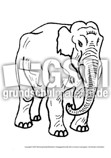 Elefant 1 Tiere Gemischt Tiere Zum Ausmalen