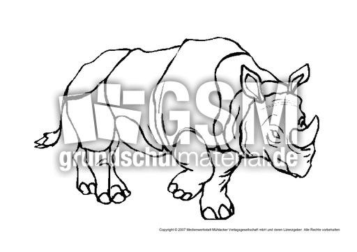 Nashorn Tiere Gemischt Tiere Zum Ausmalen Ausmalbilder