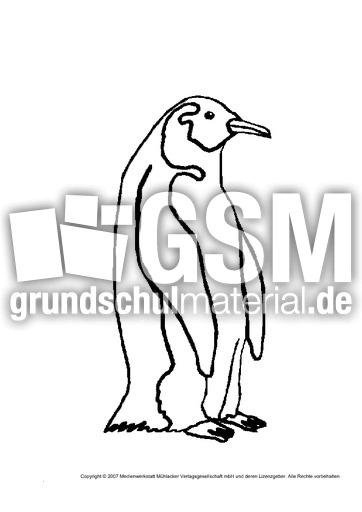 pinguin  tiere gemischt  tiere zum ausmalen