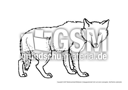 Wolf 1 Tiere Gemischt Tiere Zum Ausmalen Ausmalbilder