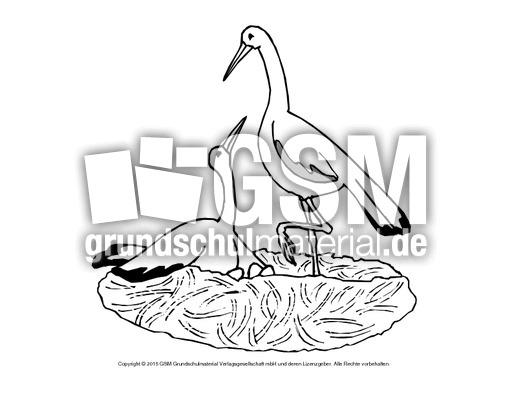 ausmalbildstörche  vögel  tiere zum ausmalen