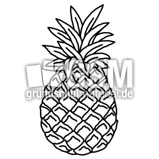 ananas  ae  nomengrafiken zum ausmalen  material