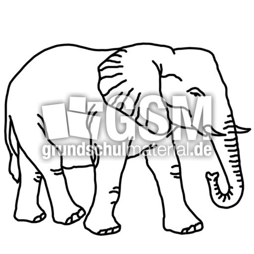 elefant  ae  nomengrafiken zum ausmalen  material