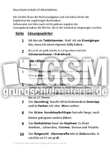 Fantastisch Algebraische Textaufgaben Arbeitsblatt Galerie ...