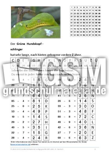 Großartig Umgruppierung Mit Subtraktion Arbeitsblatt Bilder ...