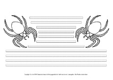 Spinne-mit-Lineatur.pdf