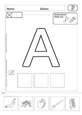 Anlaute in der Grundschule - Anlaute - Deutsch Klasse 1 ...