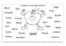 Arbeitsblatt in der Grundschule - A-M-Nomen zusammensetzen - Nomen ...