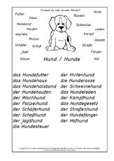 Hund in der Grundschule - Nomen zusammensetzen - zusammengesetzte ...