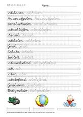 übergangslineatur 2 3 Schulausgangsschrift Schön Und Richtig
