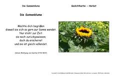 Die-Sonnenblume-Goethe.pdf