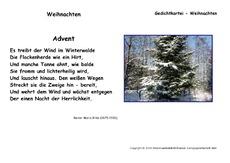 Weihnachtsgedichte Von Rilke.Rainer Maria Rilke In Der Grundschule Deutsch