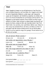 Klassenarbeit Tierbeschreibung Unterrichtsmaterial