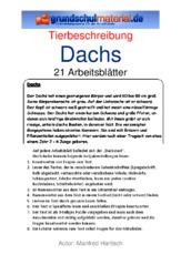 Tierbeschreibung in der grundschule - Steckbrief feldhase grundschule ...